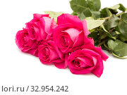 Купить «Bouquet of five pink roses isolated on a white background», фото № 32954242, снято 6 февраля 2017 г. (c) Юлия Бабкина / Фотобанк Лори