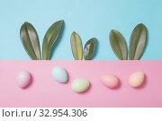 Купить «Bunny rabbit ears made of green leaves and painted eggs on pastel background. Happy Easter concept», фото № 32954306, снято 16 января 2020 г. (c) Майя Крученкова / Фотобанк Лори