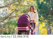 Купить «Young mother walks in the autumn park with a stroller», фото № 32966918, снято 12 ноября 2019 г. (c) Иванов Алексей / Фотобанк Лори