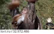 Woman expression dancing in traditional clothing of aboriginal people Kamchatka Peninsula. Itelmens national ritual festival thanksgiving nature Alhalalalay (2019 год). Редакционное видео, видеограф А. А. Пирагис / Фотобанк Лори