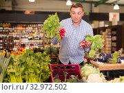 Купить «Happy customer buying radish at supermarket», фото № 32972502, снято 9 октября 2019 г. (c) Яков Филимонов / Фотобанк Лори