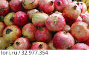 Купить «Fresh pomegranates in cardboard boxes», видеоролик № 32977354, снято 8 апреля 2020 г. (c) Яков Филимонов / Фотобанк Лори