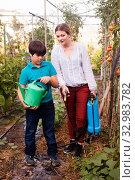 Купить «Woman with spraying apparatus and boy holding watering pot near seedlings», фото № 32983782, снято 13 августа 2018 г. (c) Яков Филимонов / Фотобанк Лори