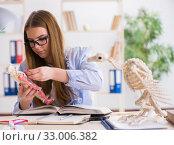 Купить «Student examining animal skeleton in classroom», фото № 33006382, снято 19 февраля 2018 г. (c) Elnur / Фотобанк Лори