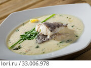 Купить «Creamy soup with white fish hake served with greens at plate», фото № 33006978, снято 1 апреля 2020 г. (c) Яков Филимонов / Фотобанк Лори