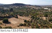 Купить «Valley with olive trees and rural houses. Cyprus», видеоролик № 33019822, снято 2 февраля 2020 г. (c) Володина Ольга / Фотобанк Лори