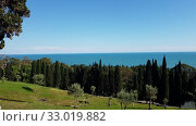 Купить «nature in Abkhazia near New Athos in summer», видеоролик № 33019882, снято 2 февраля 2020 г. (c) Володина Ольга / Фотобанк Лори