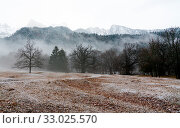 Купить «Winter forest and mountain landscape in bad weather with fog and rime on the ground in the Maienfeld region of Switzerland», фото № 33025570, снято 20 февраля 2020 г. (c) easy Fotostock / Фотобанк Лори