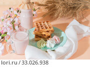 Купить «Sweet delicious dessert, homemade baked goods for breakfast. Belgian soft waffles on a blue plate with fresh fruit berry yogurt and meringues on a peach-colored background in pastel tone», фото № 33026938, снято 30 ноября 2019 г. (c) Светлана Евграфова / Фотобанк Лори