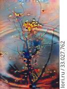 Купить «Life in a small pond», иллюстрация № 33027762 (c) Парушин Евгений / Фотобанк Лори