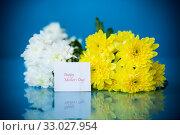 Купить «bouquet of white chrysanthemums with a greeting card for mom», фото № 33027954, снято 4 февраля 2020 г. (c) Peredniankina / Фотобанк Лори