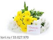 Купить «bouquet of yellow and white chrysanthemums isolated on white», фото № 33027970, снято 4 февраля 2020 г. (c) Peredniankina / Фотобанк Лори
