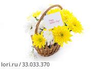 Купить «bouquet of yellow and white chrysanthemums isolated on white», фото № 33033370, снято 5 февраля 2020 г. (c) Peredniankina / Фотобанк Лори