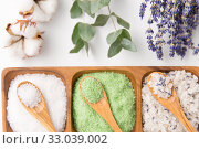 sea salt with wooden spoons and herbs. Стоковое фото, фотограф Syda Productions / Фотобанк Лори