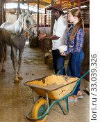Positive couple feeding horses in stable. Стоковое фото, фотограф Яков Филимонов / Фотобанк Лори
