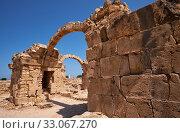 Купить «The remains of Saranta Kolones castle. Paphos Archaeological Park. Cyprus», фото № 33067270, снято 8 июня 2018 г. (c) Serg Zastavkin / Фотобанк Лори