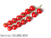 Купить «cherry tomatoes», фото № 33080454, снято 6 июня 2020 г. (c) PantherMedia / Фотобанк Лори