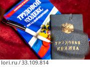 Купить «Трудовая книжка, Трудовой кодекс Российской Федерации и ручка лежат на столе», фото № 33109814, снято 15 февраля 2020 г. (c) Николай Винокуров / Фотобанк Лори