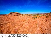 Arizona desert near Colorado river USA orange soil and blue sky. Стоковое фото, фотограф TONO BALAGUER / PantherMedia / Фотобанк Лори