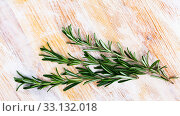 Купить «Image of rosemary on wooden background, nobody», фото № 33132018, снято 4 апреля 2020 г. (c) Яков Филимонов / Фотобанк Лори