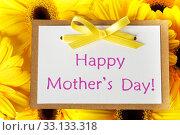 Купить «Mothers day card with gerberas», фото № 33133318, снято 20 февраля 2020 г. (c) PantherMedia / Фотобанк Лори