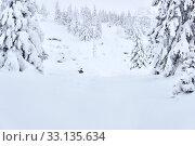 Купить «Snow covered forest in a mountain gorge», фото № 33135634, снято 8 февраля 2020 г. (c) Евгений Харитонов / Фотобанк Лори