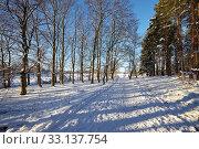 Купить «Winter Park», фото № 33137754, снято 26 мая 2020 г. (c) PantherMedia / Фотобанк Лори