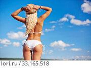 Купить «Summer vacation», фото № 33165518, снято 8 апреля 2020 г. (c) PantherMedia / Фотобанк Лори