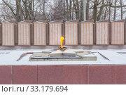 Купить «Eternal flame in Balakhna in the Nizhny Novgorod region», фото № 33179694, снято 5 января 2020 г. (c) Дмитрий Тищенко / Фотобанк Лори