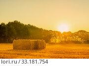 Купить «Sunrise landscape with straw bales», фото № 33181754, снято 31 мая 2020 г. (c) PantherMedia / Фотобанк Лори
