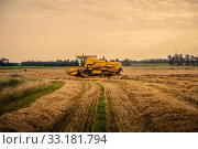 Yellow harvester driving on a field. Стоковое фото, фотограф Kasper Nymann / PantherMedia / Фотобанк Лори