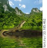 Купить «Chameleon iguana on timber decay», фото № 33185462, снято 5 апреля 2020 г. (c) PantherMedia / Фотобанк Лори