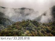 Blick in das Bodetal bei Nebel. Стоковое фото, фотограф Daniel Kühne / PantherMedia / Фотобанк Лори