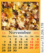 calendar for November 2016 with yellow leaves. Стоковое фото, фотограф Alexander Matvienko / PantherMedia / Фотобанк Лори