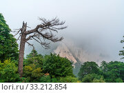 Купить «Covered in fog, mist and low clouds, mountain trail path leading to the summit of a South Peak on Huashan mountain, Shaanxi Province, China», фото № 33212854, снято 4 августа 2020 г. (c) easy Fotostock / Фотобанк Лори