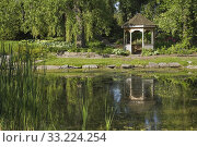 Mixed deciduous trees and wooden gazebo next to pond with Chlorophyta - Green Algae and Typha latifolia - Common Cattails in public garden in late spring... Стоковое фото, фотограф Perry Mastrovito / age Fotostock / Фотобанк Лори