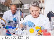 Купить «Female lab technician injecting reagent into lemon», фото № 33227486, снято 24 января 2019 г. (c) Яков Филимонов / Фотобанк Лори