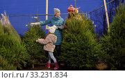 Купить «happy family buying christmas tree at market», видеоролик № 33231834, снято 6 января 2020 г. (c) Syda Productions / Фотобанк Лори