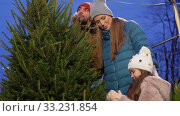 Купить «happy family buying christmas tree at market», видеоролик № 33231854, снято 6 января 2020 г. (c) Syda Productions / Фотобанк Лори