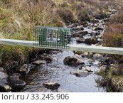 Купить «New legal type Doc Trap set across stream on Grouse Moor targeted to trap Stoat for the protection of ground nesting birds, Upper Teesdale, Co Durham, England, UK, March», фото № 33245906, снято 4 августа 2020 г. (c) Nature Picture Library / Фотобанк Лори