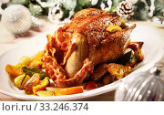 Купить «Festive roasted Christmas Pheasant Venison with rolled bacon», фото № 33246374, снято 30 марта 2020 г. (c) PantherMedia / Фотобанк Лори