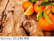 Купить «Fresh healthy home grown tangerines», фото № 33246406, снято 2 апреля 2020 г. (c) PantherMedia / Фотобанк Лори