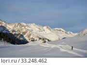 Купить «winter sports,cross-country skiing,skiing,skiing,cross-country skiers,piste,trail,evening sun», фото № 33248462, снято 26 мая 2020 г. (c) PantherMedia / Фотобанк Лори