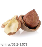 Купить «Tasty hazelnuts», фото № 33248578, снято 12 июля 2020 г. (c) PantherMedia / Фотобанк Лори