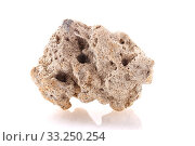 Купить «sea Stone isolated», фото № 33250254, снято 29 февраля 2020 г. (c) PantherMedia / Фотобанк Лори