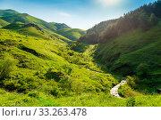 Green mountain meadows flooded with bright summer sun in Armenia. Стоковое фото, фотограф Константин Лабунский / Фотобанк Лори