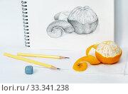 Купить «Нарисованный с натуры мандарин», фото № 33341238, снято 8 января 2017 г. (c) Dmitry29 / Фотобанк Лори