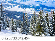 Valley behind snow covered fir forest French Alps (2019 год). Стоковое фото, фотограф Сергей Новиков / Фотобанк Лори