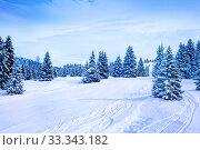 Купить «Fir forest covered with snow after strong snowfall», фото № 33343182, снято 2 марта 2019 г. (c) Сергей Новиков / Фотобанк Лори