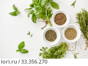 Купить «fresh and dry seasoning on white background», фото № 33356270, снято 12 июля 2018 г. (c) Syda Productions / Фотобанк Лори